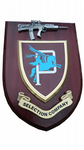 Parachute Regiment P Company Selection Military Wall Plaque + Pewter SA80